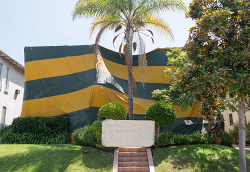 Tenting and Fumigation for Termites